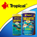Logo Tropical 140 x 140